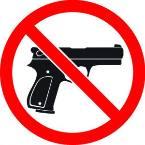 Prohibited Bores/Guns